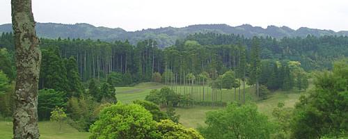 大多喜城ゴルフ倶楽部 訪問記
