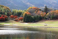 shishido-hills-p53