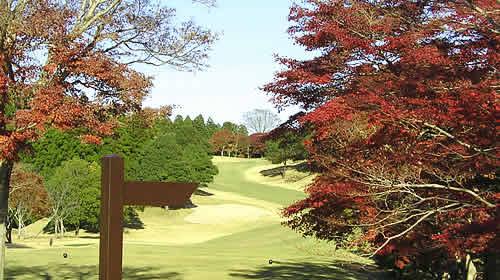 ゴルフ倶楽部 成田ハイツリー訪問記