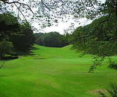 東京国際ゴルフ倶楽部訪問記